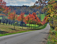 Laymon Road, Knox County
